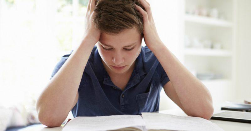 e0b1b04357 Motivazione e Scuola, istruzioni per l'uso..!!